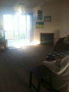 Living room, with gorgeous sunlight coming in off the balcony!