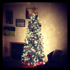 Our pretty little Christmas tree!