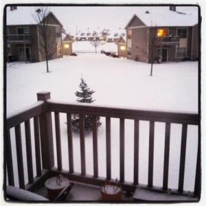 We got snow yesterday! Yay!!