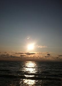 photo 1 (10)