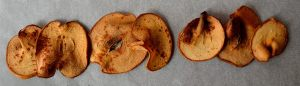 DIY Fruit Chips