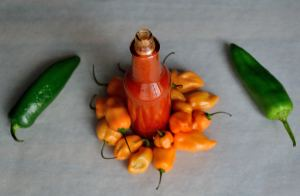 DIY Wednesday: Hot Sauce | Life Healthfully Lived