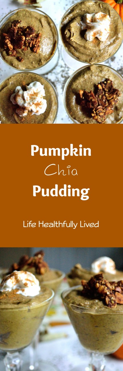 Pumpkin Chia Pudding | Life Healthfully Lived