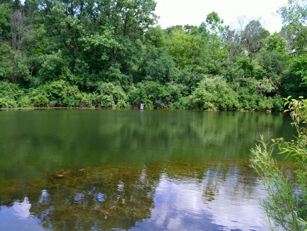 Camping at Rock Cut State Park | Life Healthfully Lived