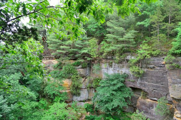 30,000 Steps at Starved Rock | Life Healthfully Lived
